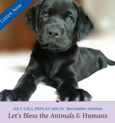 Let's Bless the Animals & Humans Monthly Call Replay with Dr. Bernadette Hartman